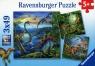 Puzzle Dinozaury 3x49 (093175)