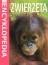 Mini Encyklopedia Zwierzęta Bedoyere de le Camilla