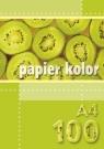 Papier kolorowy A4 100k żółty