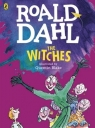 The Witches Colour Edition Dahl Roald