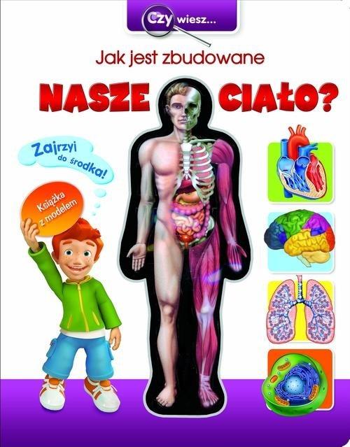 Czy wiesz Jak jest zbudowane nasze ciało