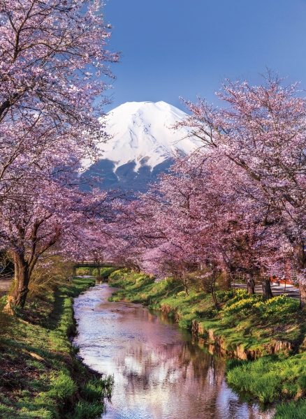 Puzzle High Quality Collection 1000: Góra Fuji (39418)