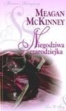 Niegodziwa czarodziejka Meagan McKinney