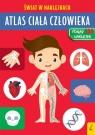 Atlas ciała człowieka. Świat w naklejkach