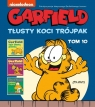 Garfield. Tłusty koci trójpak. Tom 10