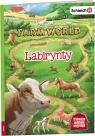Farm World Labirynty