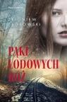 Pąki lodowych róż Saga rodzinna Zborowski Zbigniew