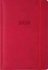 Kalendarz 2020 A5 dzienny Lux Registry szary