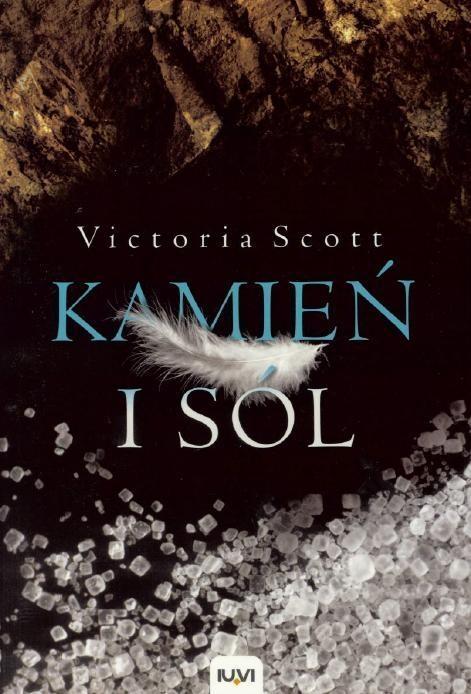 Kamień i sól (Uszkodzona okładka) Scott Victoria