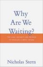Why are We Waiting? Nicholas Stern