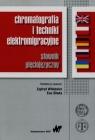 Chromatografia i techniki elektromigracyjne słownik pięciojęzyczny Praca zbiorowa