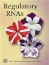 Regulatory RNAs B Stillman