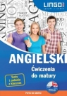 Angielski Ćwiczenia do matury + CD Treger Anna