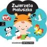Książeczka kontrastowa Zwierzęta maluszka Michalec Bogusław