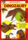 Dinozaury Książka uczy bawi rozwija