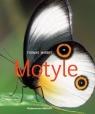 Motyle Marent Thomas