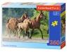 Puzzle Purebred Arabians 260 (27194)