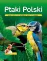 Ptaki Polski. Mała encyklopedia ilustrowana