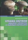 Uprawa grzybów jadalnych i leczniczych w warunkach naturalnych  Siwulski Marek, Sobieralski Krzysztof