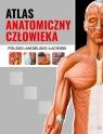 Atlas anatomiczny człowieka