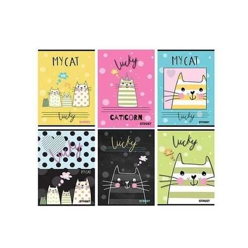 Zeszyt Street My Cat A5 w kratkę 54 kartki 10 sztuk