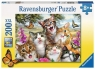 Puzzle 200 XXL Zwariowane koty (12 620 0)