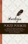 Antologia poezji polskiej praca zbiorowa
