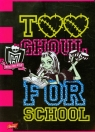 Zeszyt A5 Monster High w trzy linie 16 kartek