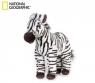 Zebra (770720)