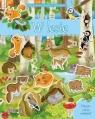 Moja pierwsza książka z naklejkami. W lesie