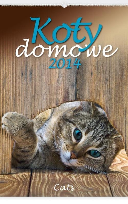 Kalendarz 2014 Koty domowe