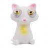 Kotek z wybrzuszonymi oczami Wiek: 3+