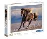 Puzzle HQC 1000: Free Horse (39420) Wiek: 14+