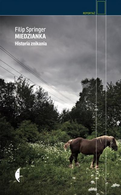 Miedzianka. Historia znikania Filip Springer