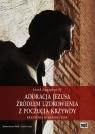 Adoracja Jezusa źródłem uzdrowienia z poczucia krzywdy  (Audiobook)