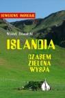 Islandia - czasem zielona wyspa Ziemnicki Wojciech