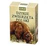 Dzikie zwierzęta Polski