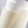 Papier ozdobny (wizytówkowy) Galeria Papieru laid biały A4 biały 120g