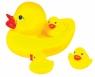 Rodzinka kaczek (1132421) od 0 miesięcy
