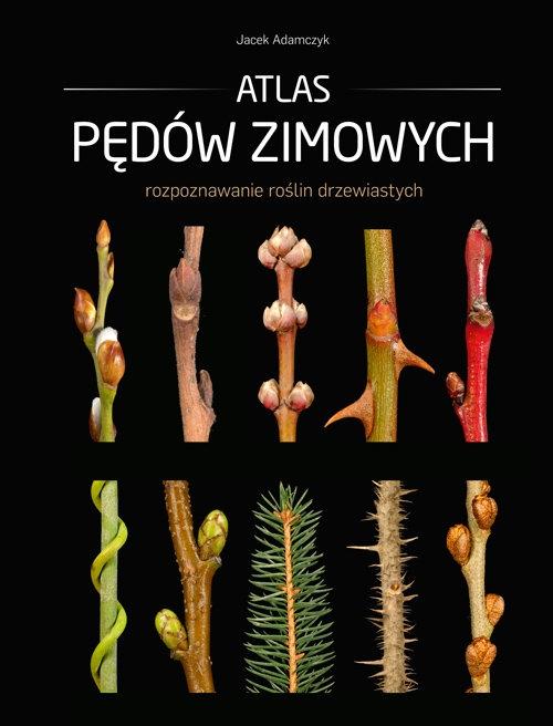 Atlas pędów zimowych Jacek Adamczyk