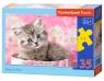 Puzzle Kitten in Box 35 elementów (035212)