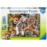 Puzzle XXL 200: Dzikie koty (12721) Wiek: 8+