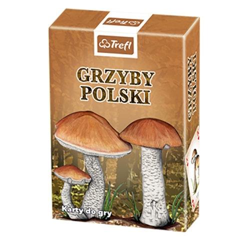 Grzyby Polski