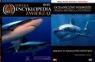 Wielka encyklopedia zwierząt. Ryby. Tom 21 + DVD