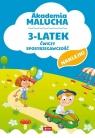 Akademia malucha 3-latek ćwiczy spostrzegawczość