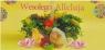 Kartka DL Świąteczna MIX Wielkanoc AVANTI