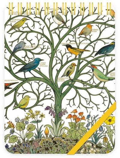 Kołonotes ozdobny Birds of Many Climes