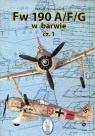 Fw 190 A/F/G w barwie część 1  Nowakowski Ludwik