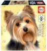 Puzzle 100 Psy - Yorkshire terrier G3