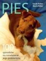 Pies 100 sposobów na rozwiązanie jego problemów